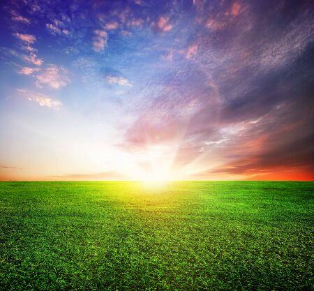 wschód słońca: Pole zielone i Piękny Sunrise  Zdjęcie Seryjne