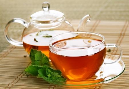 teepflanze: Tee  Lizenzfreie Bilder