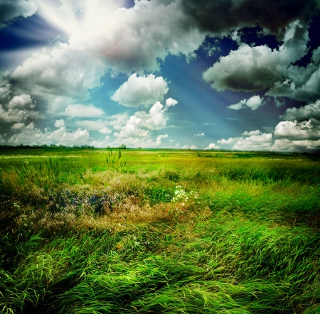 paesaggio: Bella natura paesaggio rurale