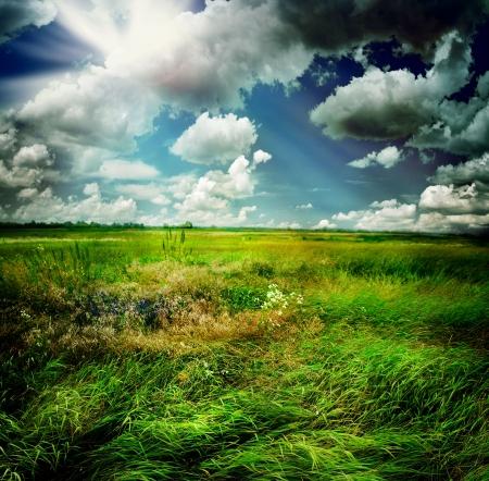gotas de agua: Naturaleza hermosa paisaje rural
