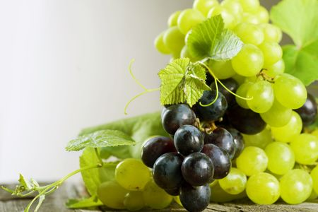 Grape.Grapevine over vineyard background Stock Photo - 7683099