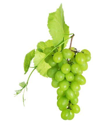 Grape cluster over white Stock Photo - 7683098
