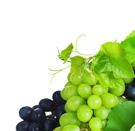 Grapes border isolated on White photo