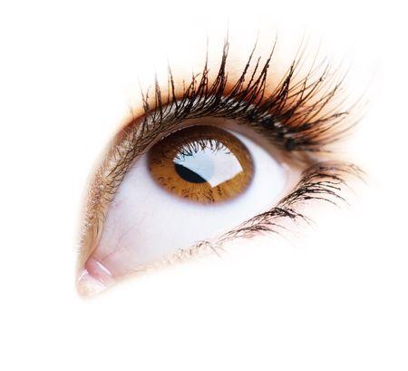 흰색 배경 위에 여자의 아름 다운 눈