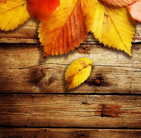 fall leaves: Autumn Leaves over wooden background. With copy-space for text
