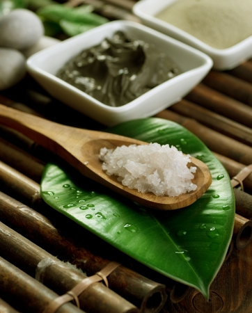 Sea Spa: Mud Mask and Sea Salt Close-up. Spa setting Stock Photo - 8718333