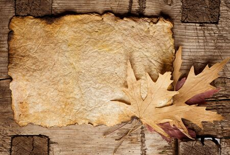 burnt wood: Autumn Leaves on the Old Paper sheet