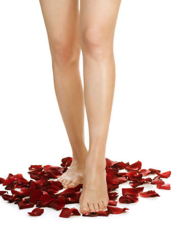 Healthy Long Woman's Legs and Rose Petals over white. Stock Photo - 8392235