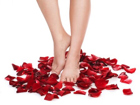 Healthy Long Woman's Legs and Rose Petals over white. Stock Photo - 8381170
