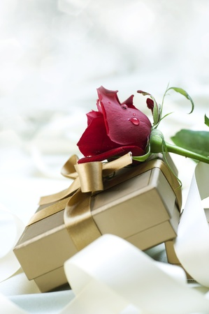 Gift and Rose photo