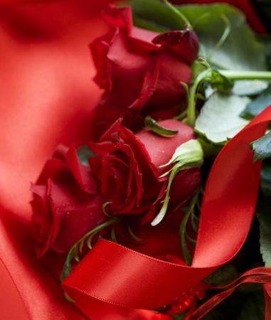 Beautiful red Roses.Valentines Day photo