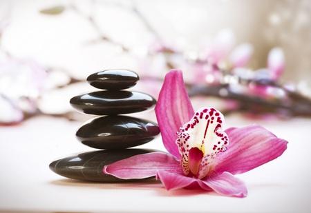 spa stone: Spa Steine und Orchid flower