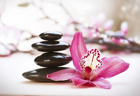 salon spa: Spa Stones and Orchid flower Stock Photo