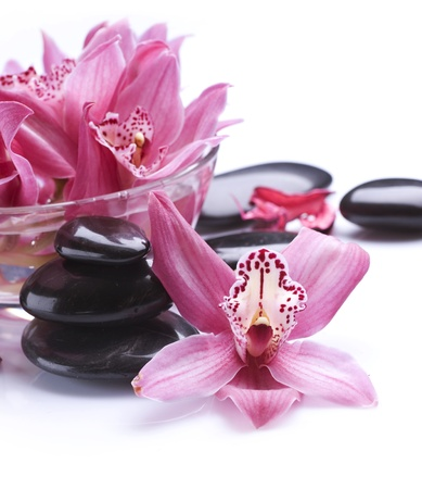 hot rock therapy: Spa Stones and Orchid flowers over white