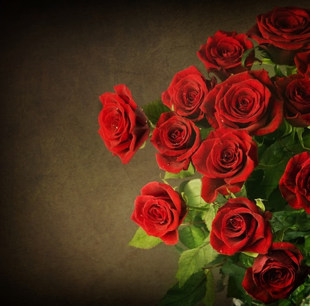 rosa: Big Red Roses Bouquet.Vintage Styled Stock Photo