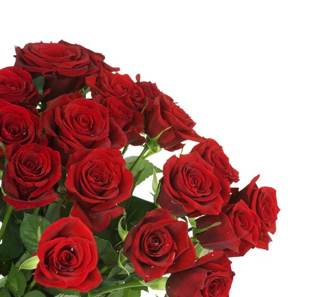 Big Red Roses Bouquet border photo