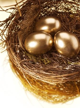 fund: Golden Nest Eggs