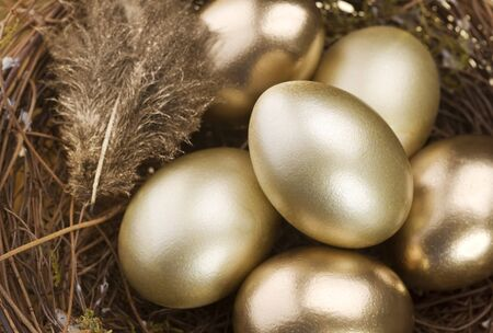 Golden Nest Eggs Stock Photo - 9019684
