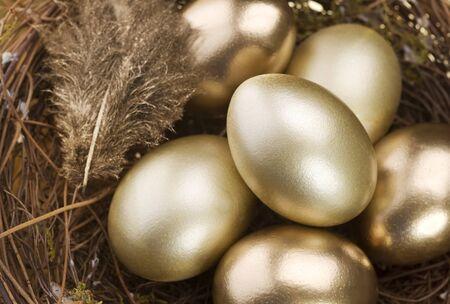 symbols metaphors: Golden Nest Eggs