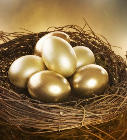 黄金の卵の巣 写真素材