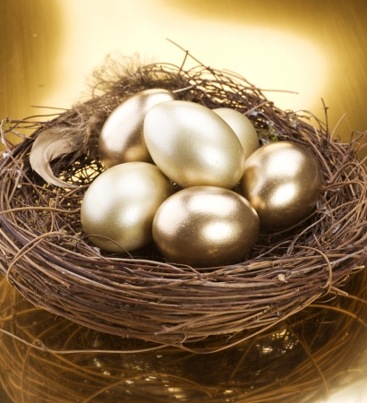 business symbols and metaphors: Golden Nest Eggs