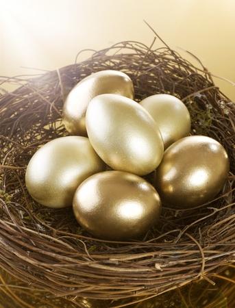 Golden Nest Eggs Stock Photo - 9023622