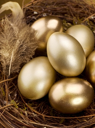 nest egg: Golden Nest Eggs