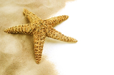 Starfish on the Sand border design.Isolated on white.Vacation concept photo