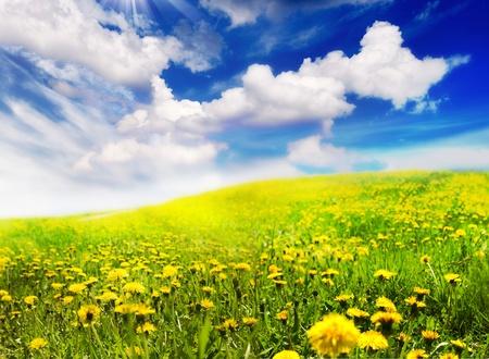 seasonic: Spring Landscape Stock Photo