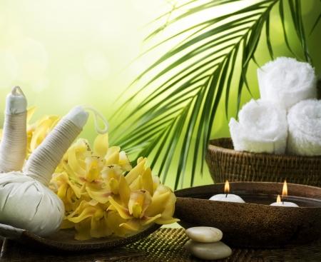 Spa. Thai Massage Stock Photo - 9379129