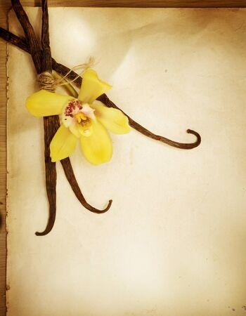 flor de vainilla: Vainilla sobre fondo de cosecha de papel. Diseño de frontera