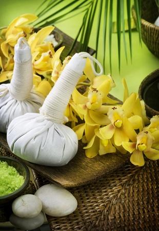Spa. Thai Massage Stock Photo - 9378991