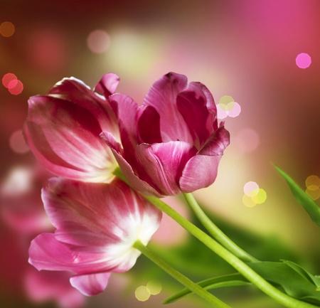 Flowers. Anniversary Card Design photo
