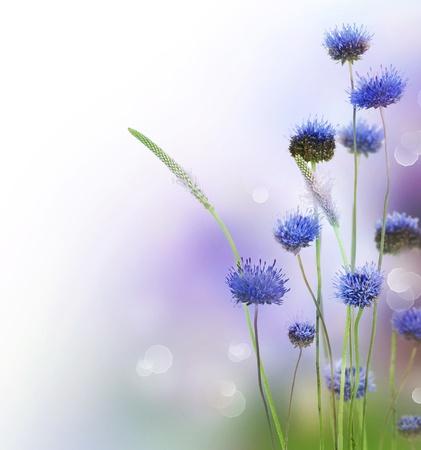 Abstract bloemen boordmotief
