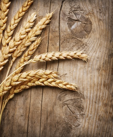 autumn harvest: Wheat Ears on the Wood Background Stock Photo