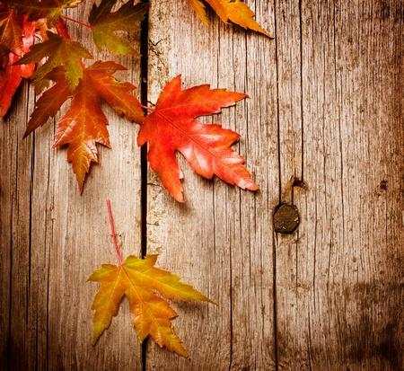 木製の背景上の秋の紅葉 写真素材