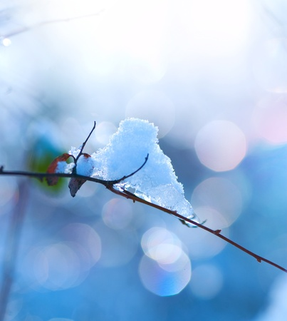 sunny cold days: Winter art design. Snow