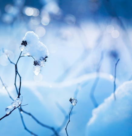 Inverno art design. Neve