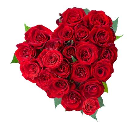 Rose Bloemen Hart Op Witte. Valentine. Liefde