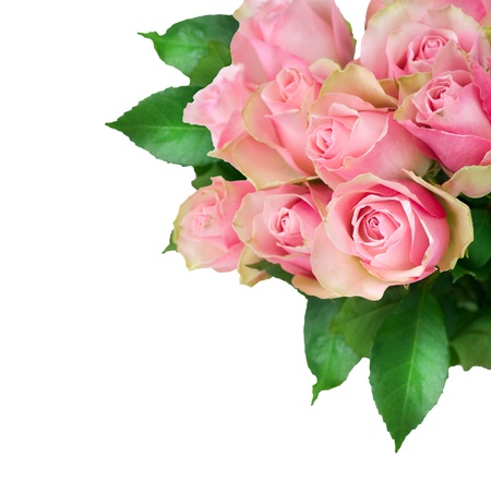 pink rose petals: Roses Bunch