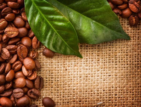 Coffee Border design  Coffee Beans and Leaves  Stock Photo - 12862908