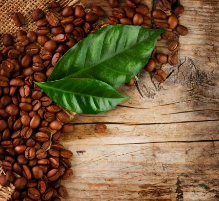 planta de cafe: Granos de caf� de dise�o y las fronteras de hojas sobre fondo de madera
