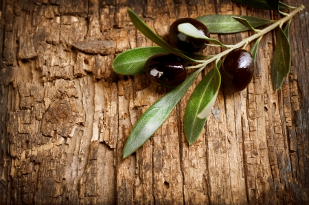 Olives over Old Wood Background  photo