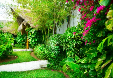 architecture bungalow: Exotic Landscaping Design