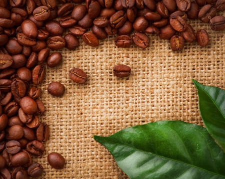 Coffee Border design  Coffee Beans and Leaves Stock Photo - 13684215