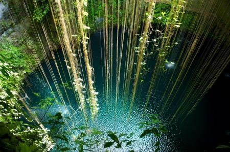 beneath: Ik-Kil Cenote, Chichen Itza, Mexico  Stock Photo