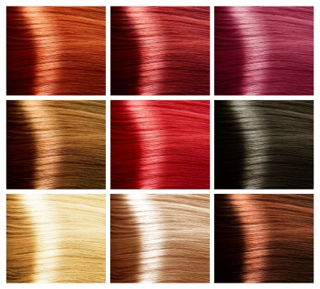 Hair Colors Palette photo