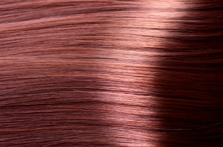 Healthy Brown Hair Close-up photo