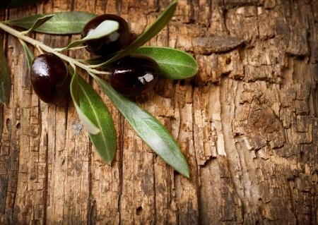 hoja de olivo: La rama de olivo sobre fondo de madera