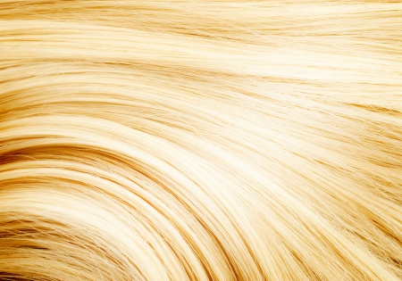 人間の髪の毛: 髪 写真素材